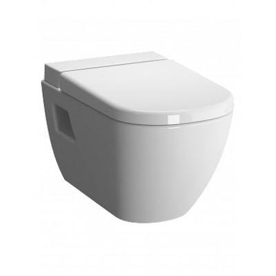 D-Light Подвесной унитаз с бачком для чис.жидкости+ сиденье микролифт